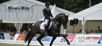 Grand Galaxy Win selected for WCYH - 7 horses participating from Helgstrand Dressage